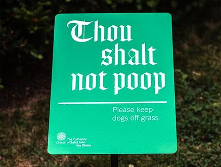 Thou_shalt_not_poop