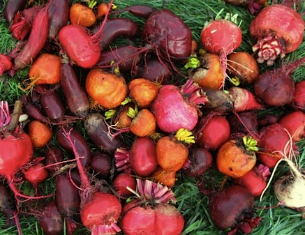 assorted_beets