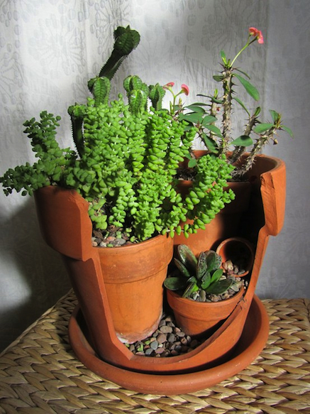 broken_pot_planter