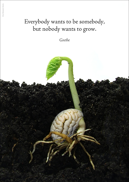 Growth_Goethe